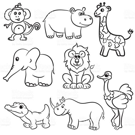 Drawing Zoo Animals by Drawings Of Zoo Animals 15138