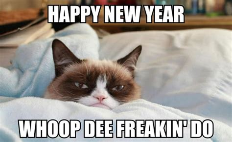 Grumpy Cat Meme Happy - grumpy cat new year yes memes