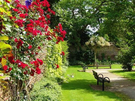 sunbury walled garden jigsaw puzzle in flowers puzzles on