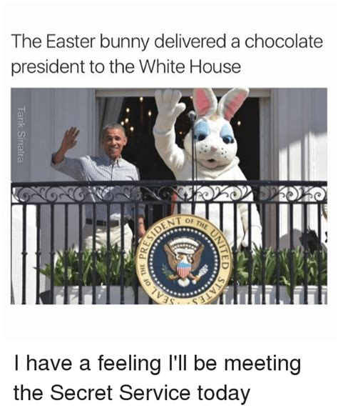 Chocolate Easter Bunny Meme - chocolate easter bunny meme www pixshark com images
