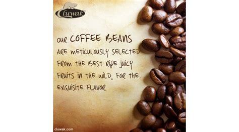 Luwak Coffee indulgence pack kopi luwak gold 200g black 200g labels