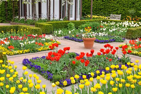 Britzer Garten Preise by Bild Tulpengarten Britzer Garten Berlin Deutschland