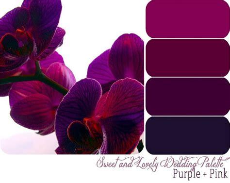 purple color combination 25 best burgundy walls ideas on pinterest burgundy
