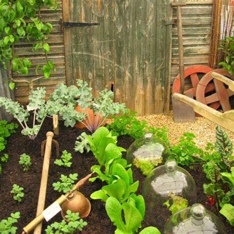 Vegetable Garden Wallpaper Wallpaper Gallery Vegetable Garden Wallpaper