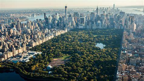 new york real time a new york c 232 l anagrafe real time di alberi e piante