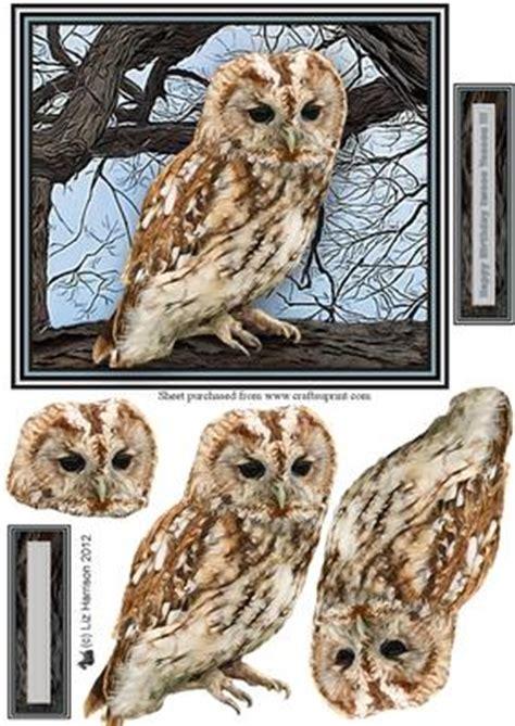 Owl Decoupage - owl 3d decoupage cup329346 15 craftsuprint