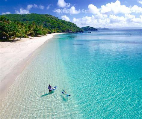 swim trip  paradise ocean swim fiji
