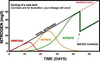 Do I Need To Cycle Tank If I Detox It by The Nitrogen Cycle The Free Freshwater And Saltwater