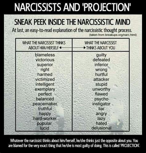 celebrity narcissism meaning 25 best ideas about narcissist meaning on pinterest