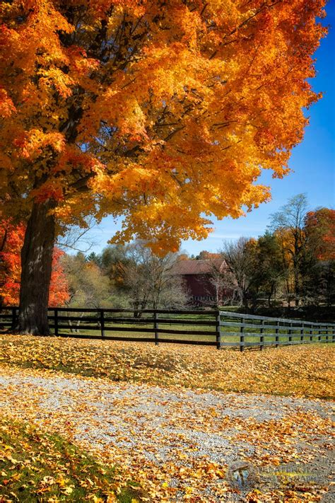 fall colors 2015 ohio autumn michael criswell photography quot theaterwiz quot