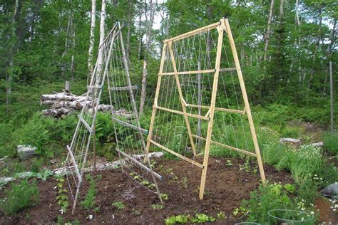 Vegetable Garden Structures A Frame Structures In The Vegetable Garden Corner