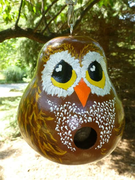 bird house gourds birdhouse gourds crafts ideas