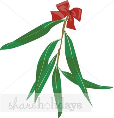 eucalyptus leaves with red bow clipart christmas