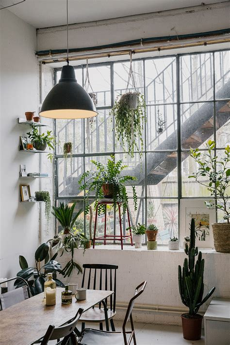 home interior plants serene green interiors house of plants lobster and swan
