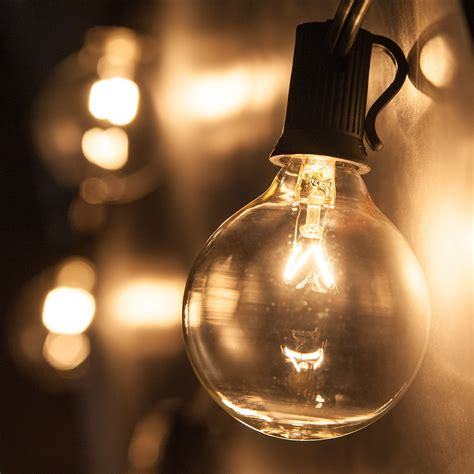 globe string lights clear  bulbs yard envy
