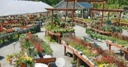 Closest Garden Center by Mahoney S Garden Center Locations Find Your Nearest Mahoney S Garden Center Store In