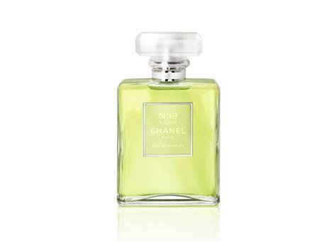 Parfum Chanel Nomor 12 næ á c hoa chanel no 19 edp qu 253 c 244 cá ä iá n ki 234 u ká