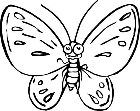 coloring pictures of a www preschoolcoloringbook butterfly moths coloring