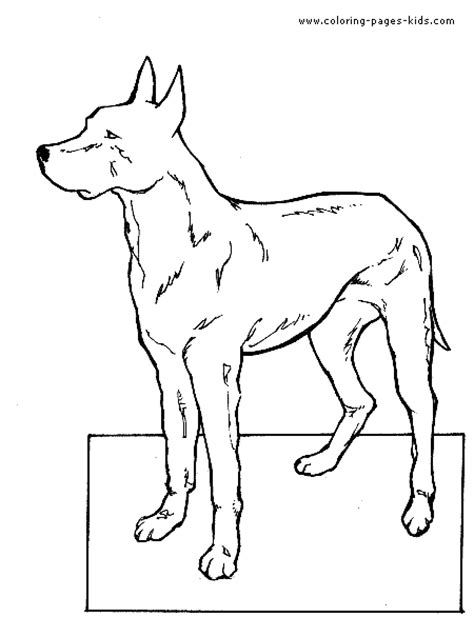 coloring pages of horses and dogs free coloring pages of horses and puppy