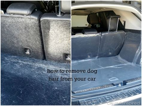 how to remove hair from car how to remove hair from car cleverly inspired