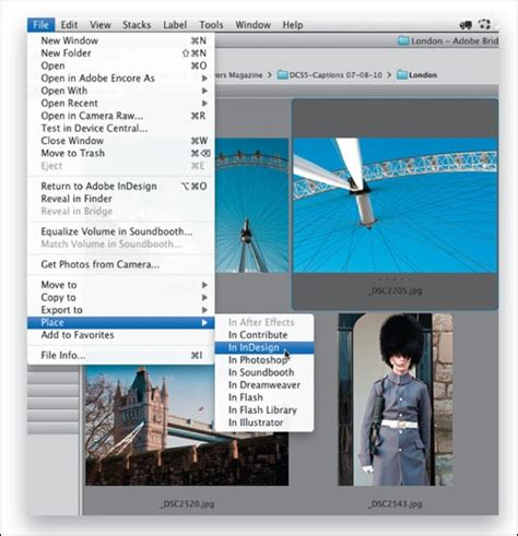 creating forms indesign indesign tutorials 30 amazing adobe indesign tutorials
