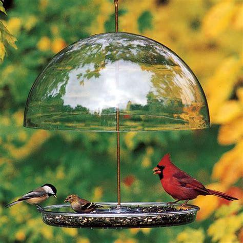 dorothys cardinal feeder outside fun pinterest