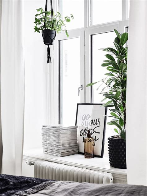 Windowsill Decoration by Decorating Black Holes 3 Of The Most Easily Forgotten