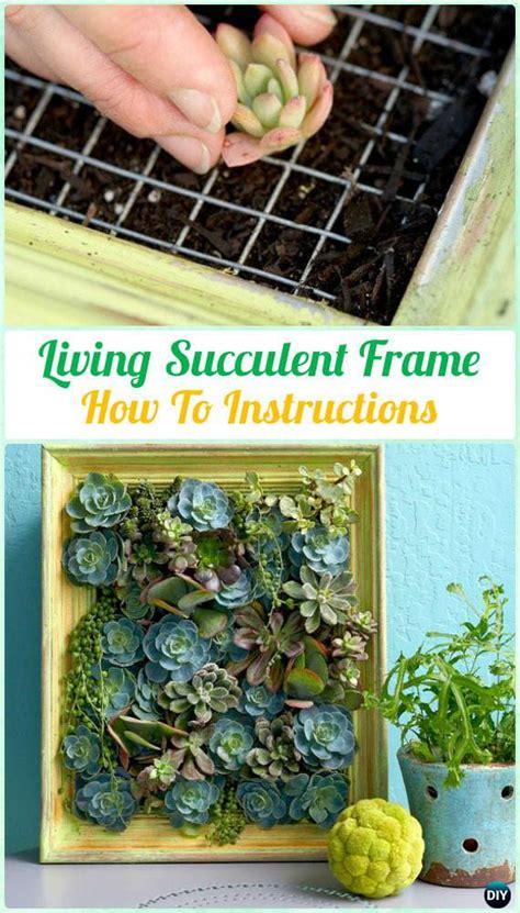 succulent turtle outdoor ideas pinterest diy indoor outdoor succulent garden ideas veryhom