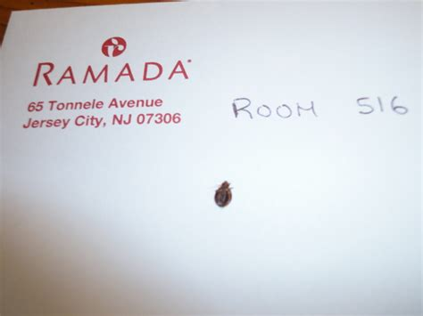 hotels with bed bugs jersey city nj bed bug hotel and apartment reports