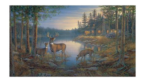 country wall murals new 15 x9 places deer prepasted wallpaper mural country cabin wall decor ebay