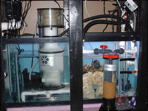 Refugium Plumbing by Diy Sump Refugium Aquarium Filter The Fish Tank Joint