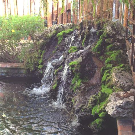 koi pond waterfall cory pinterest