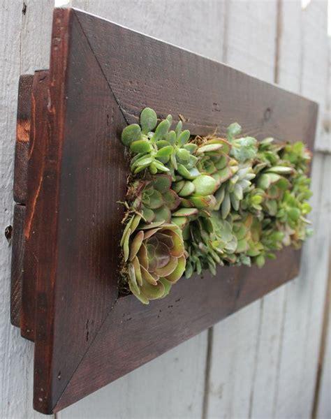 indooroutdoor living wall  planted living succulents