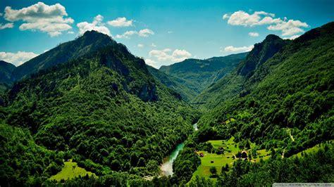 Imagenes Montañas Verdes   fondos de pantalla de grandes montanas verdes tama 241 o 400x250
