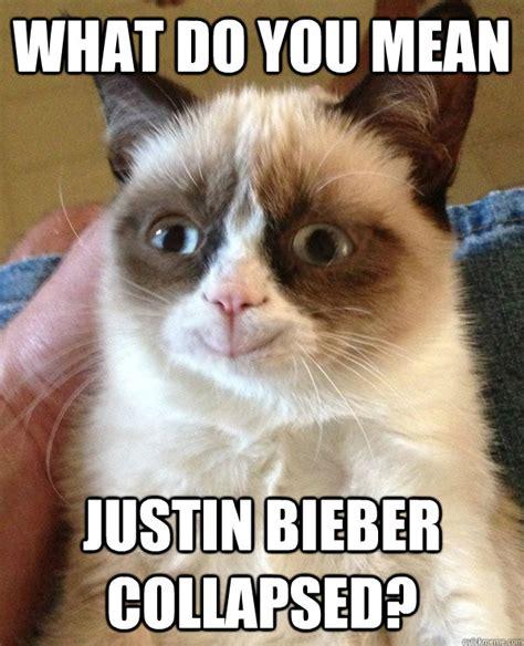 Happy Grumpy Cat Meme - happy grumpy cat photo lol me
