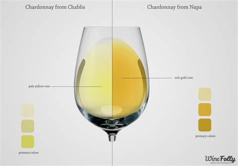 chardonnay color sauvignon blanc wine color white gold