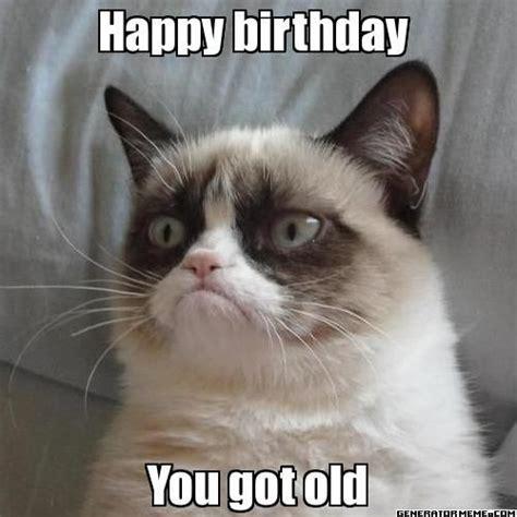 Grumpy Cat Meme Happy - best 25 grumpy cat birthday ideas on pinterest grumpy