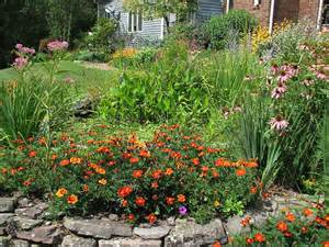 naba jersey butterfly club gardening