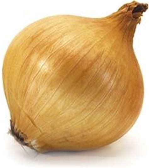 onions in bedroom when sick 1000 images about onion recipes health benefits and