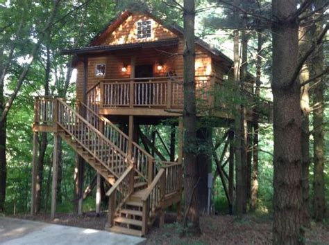 cherry tree house cherry treehouse picture of coblentz country cabins berlin tripadvisor