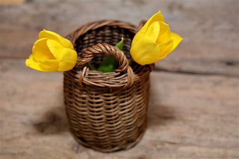 Keranjang Makanan gambar menanam kayu makanan menghasilkan keranjang