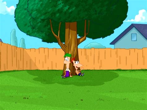 Phineas And Ferb Backyard by Image Phineas And Ferb In The Backyard Jpg Phineas And