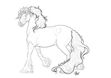 gypsy vanner horse coloring pages printable sketch