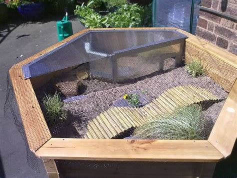 outdoor tortoise house plans sulcata tortoise enclosure uk related keywords sulcata tortoise enclosure uk long
