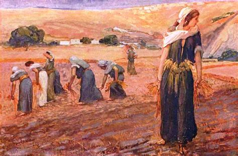 31 days of gleaning with ruth questioning my way through a famine season books verbum domini