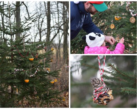 decorating an outdoor edible tree for the animals wilder