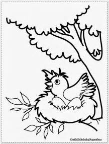 Bird Coloring Pages Realistic  sketch template