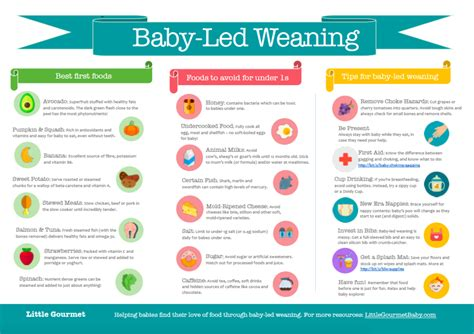 Pdf Baby Led Weaning Essential Introducing Foods by Salt Intake Guidelines For Babies Gourmet Baby