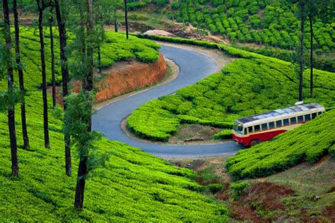 7 Places To Visit At Time by Munnar India Places To See In Munnar Best Time To
