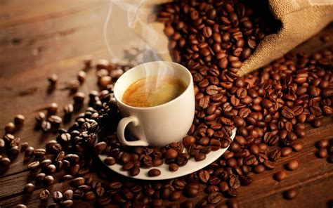 gambar wallpaper coffee jual kopi robusta dan arabika
